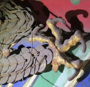 Coin Dragon Claw