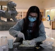 Staff at Henan Museum digging for treasure in blind box