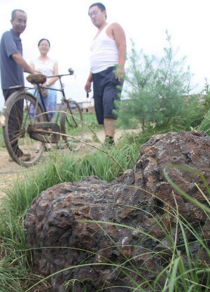 "Buried ""mountain"" of Song Dynasty iron coins seen in field near Cangzhou"