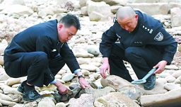 Local police using a handheld metal detector easily found buried ordnance
