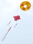 Chinese coin kite