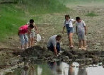 Villagers digging for buried coins
