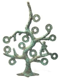 Chinese money tree