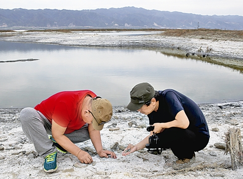Two bird photographers at the Yuncheng salt lake discover more than 500 clay moulds used to cast iron coins during the Song Dynasty